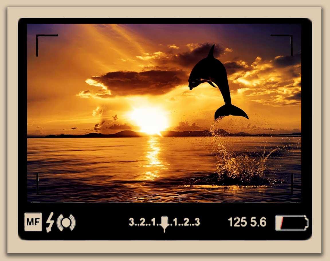 Sunrise or Sunset Photos  Stunning8 - عکاسی از طلوع و غروب و 5 دلیل برای عدم جذابیت عکس های شما