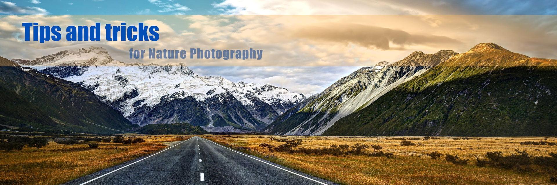 akkasi nature tabiat 2 - عکاسی از طبیعت