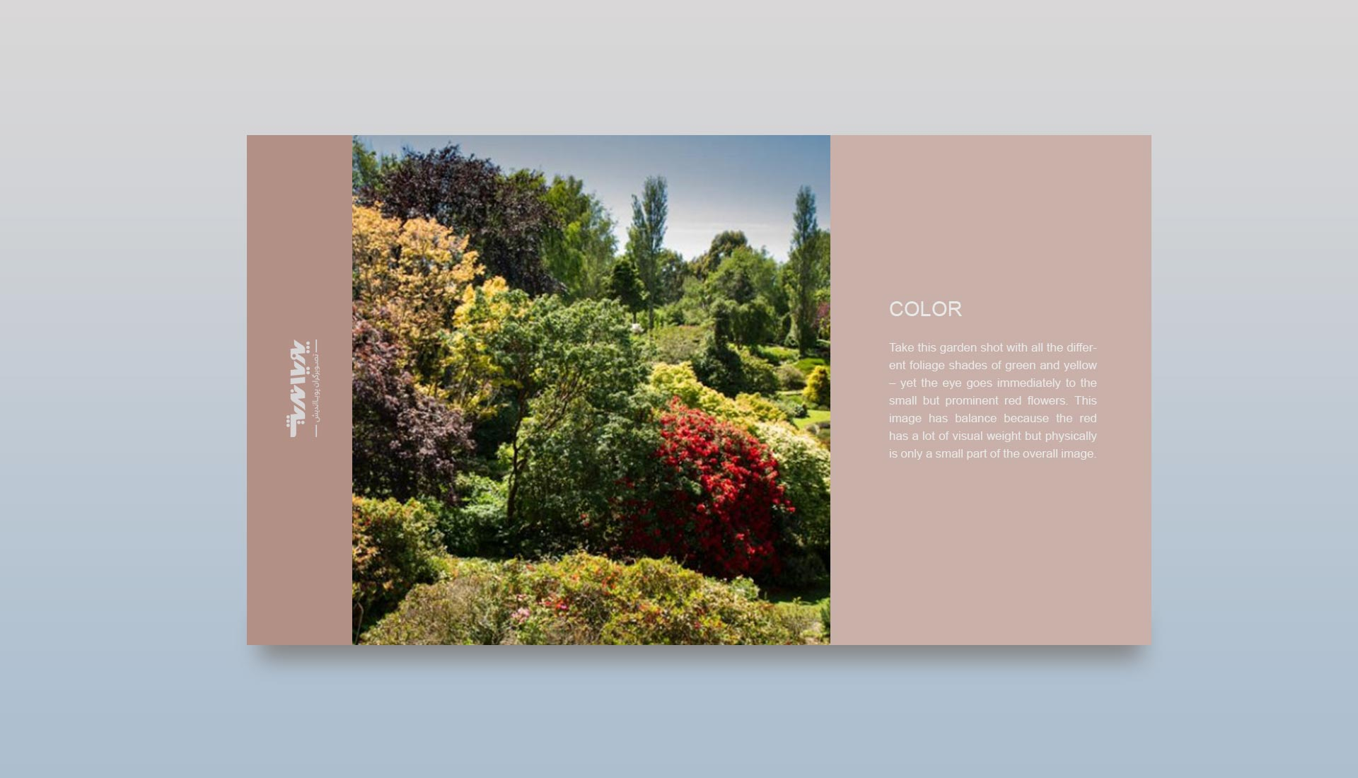 color in photography 2 - تعادل در عکاسی