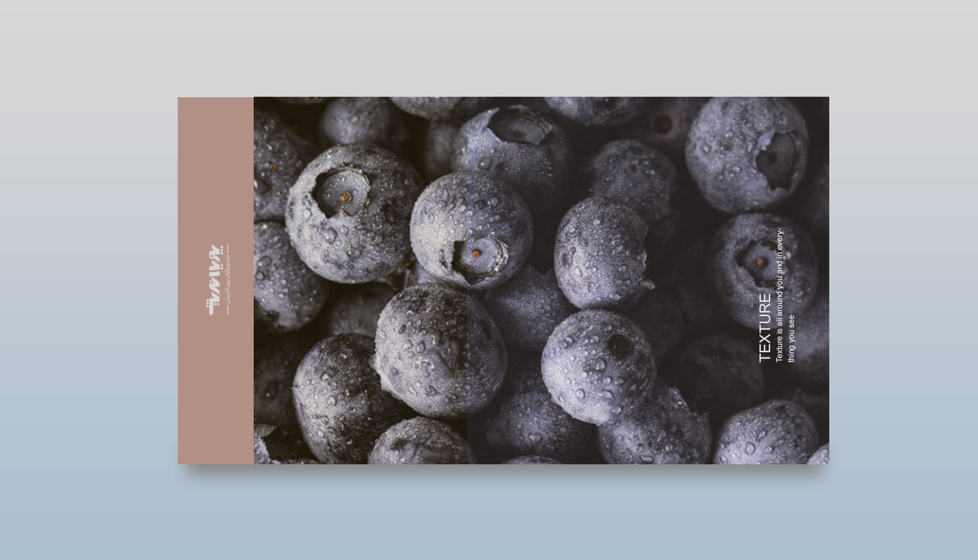 texture in photography 2 - تعادل در عکاسی