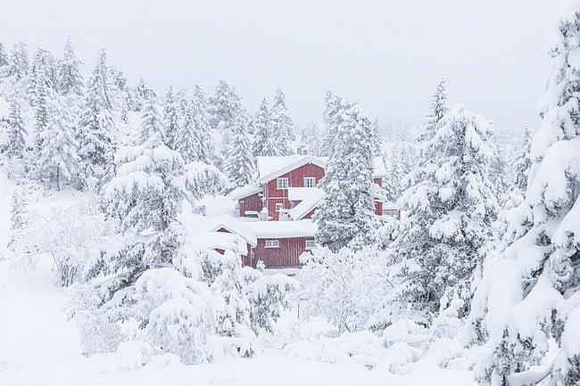 winter photography - 5 ترفند برای عکاسی از مناظر زمستانی