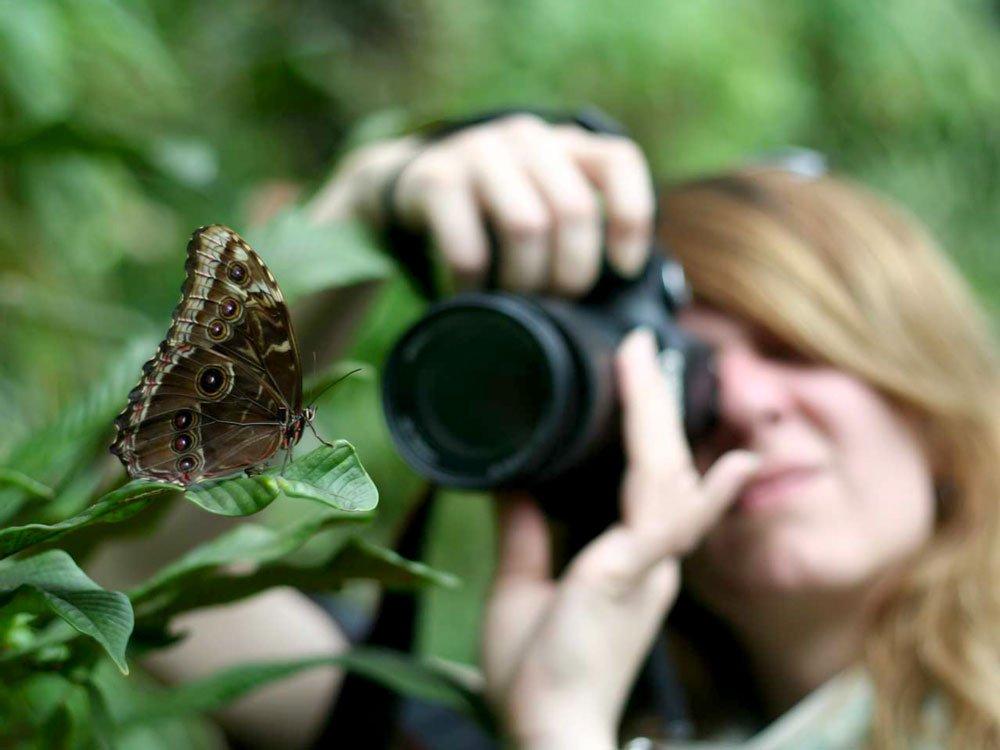 akasi macro hasharat14 - عکاسی ماکرو از حشرات