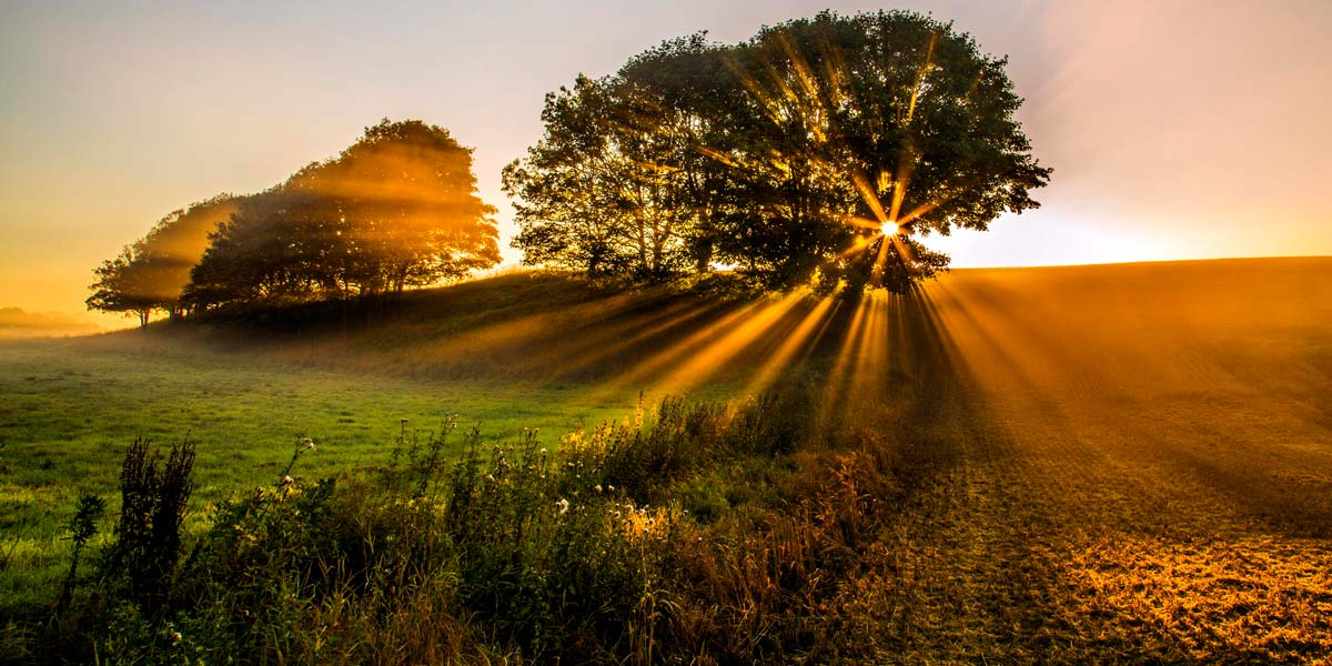 golden hour nature - ساعت طلایی در عکاسی چیست ؟