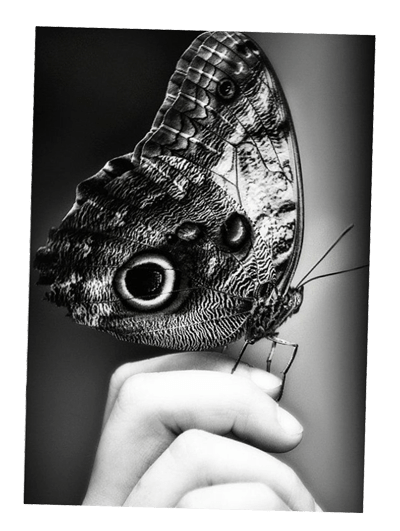 photographer 1 akkasi 8 - آموزش عکاسی