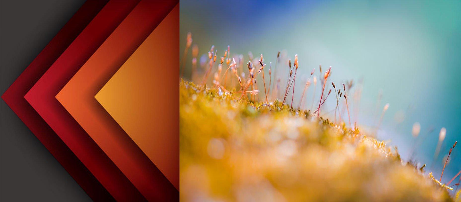 Abstract  Photography12jpg - 35 ایده و راهنما برای عکاسی انتراعی