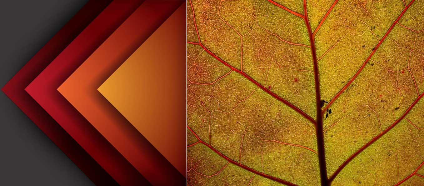 Abstract  Photography7 - 35 ایده و راهنما برای عکاسی انتراعی