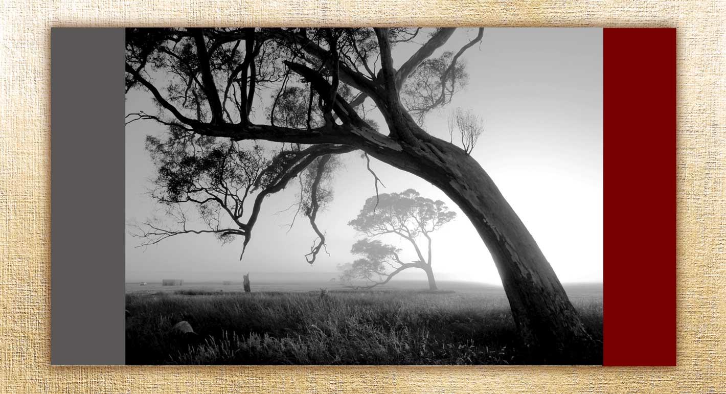 Good   photo  5 - عناصر عکاسی : سه عنصر سازنده یک عکس خوب