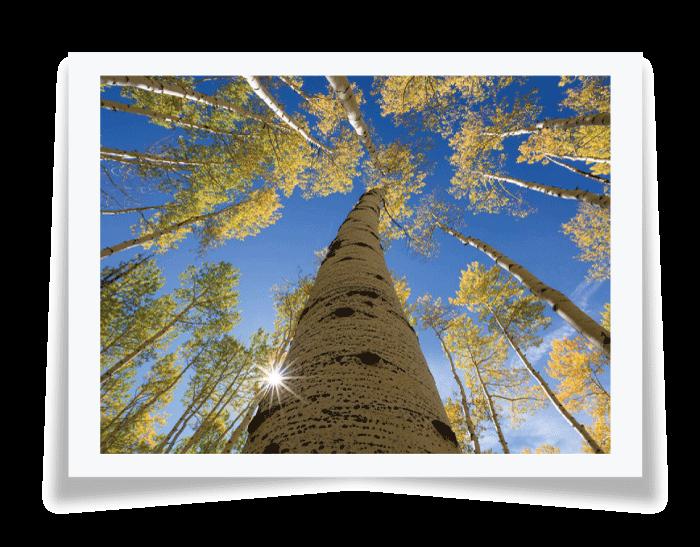 color photography - رنگ ها در عکاسی