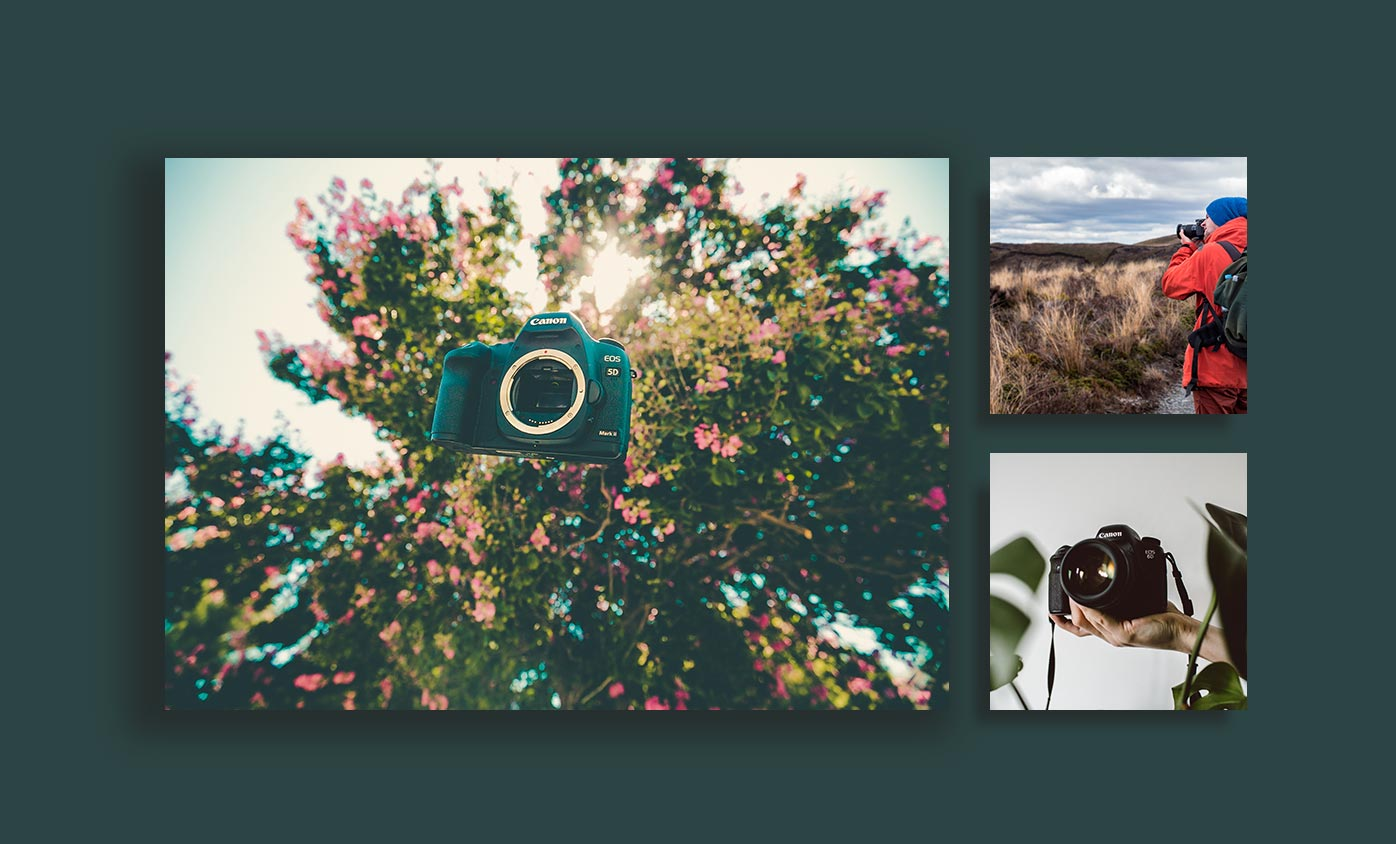 type of photography - 24 مورد از انواع عکاسی که هرکدام از آنها جهان را زیباتر کرده است