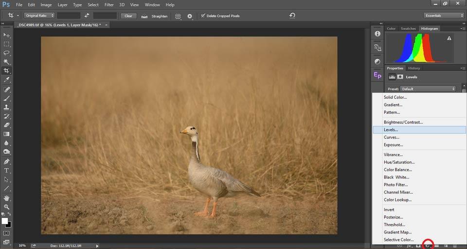 5 Contrast in Photography - درک کنتراست در عکاسی