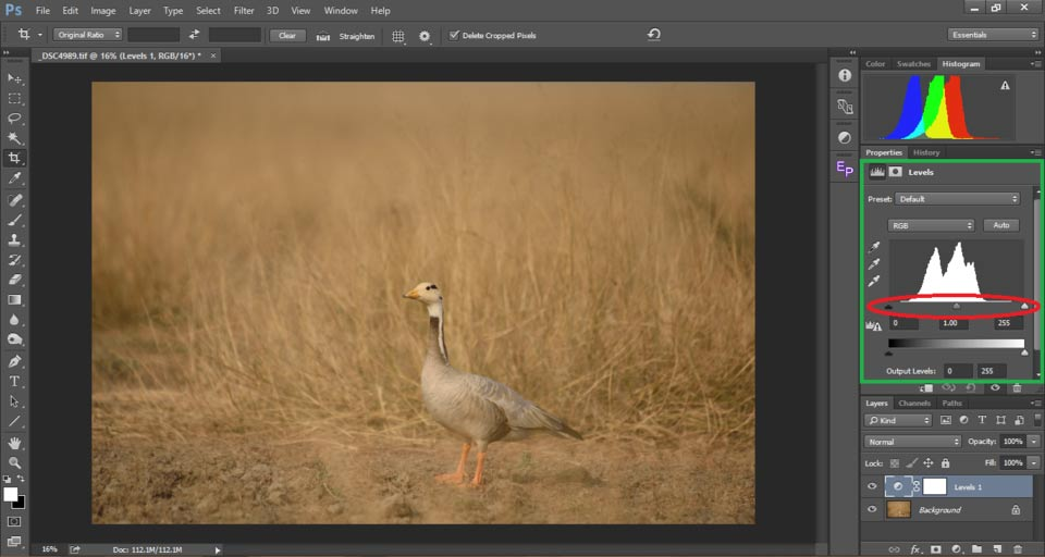 6 Contrast in Photography - درک کنتراست در عکاسی