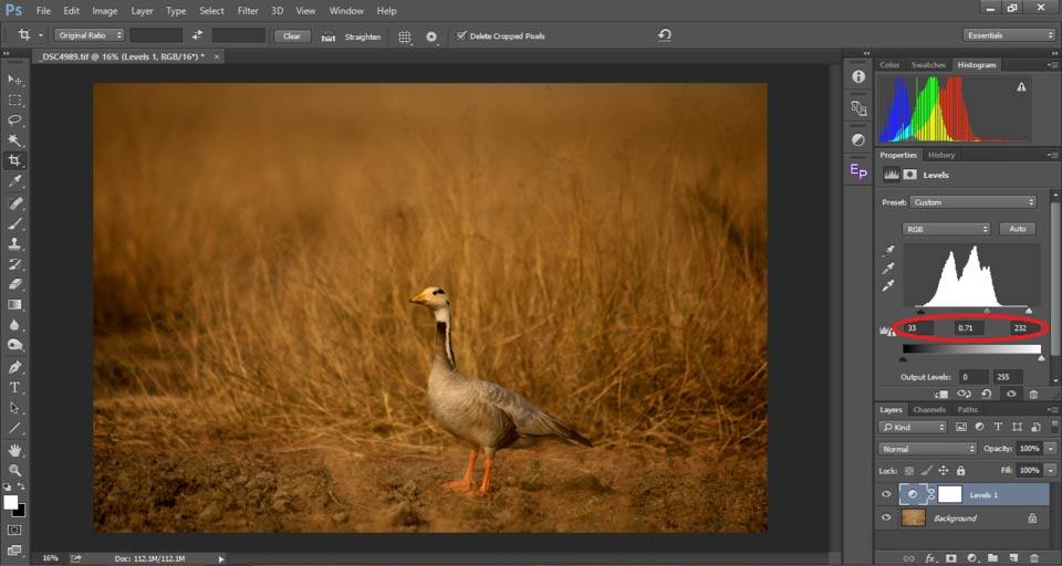 7 Contrast in Photography - درک کنتراست در عکاسی
