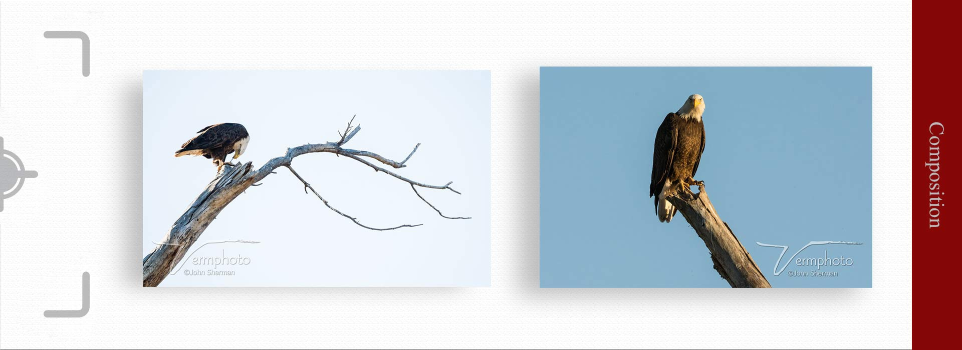 Composition in photography 2 - مهمترین ویژگی های عکس خوب چیست ؟