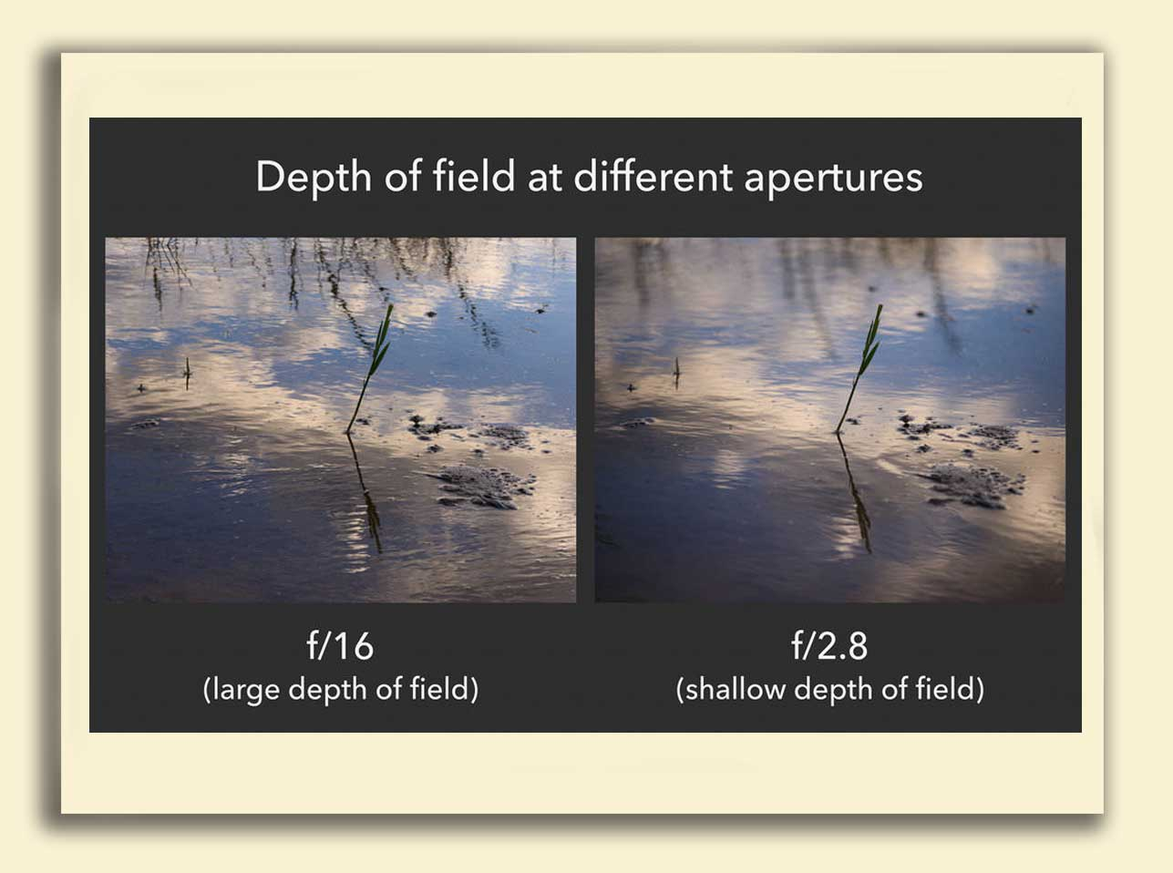 Exposure 16 - نوردهی در عکاسی چیست؟ (راهنمای مبتدیان)
