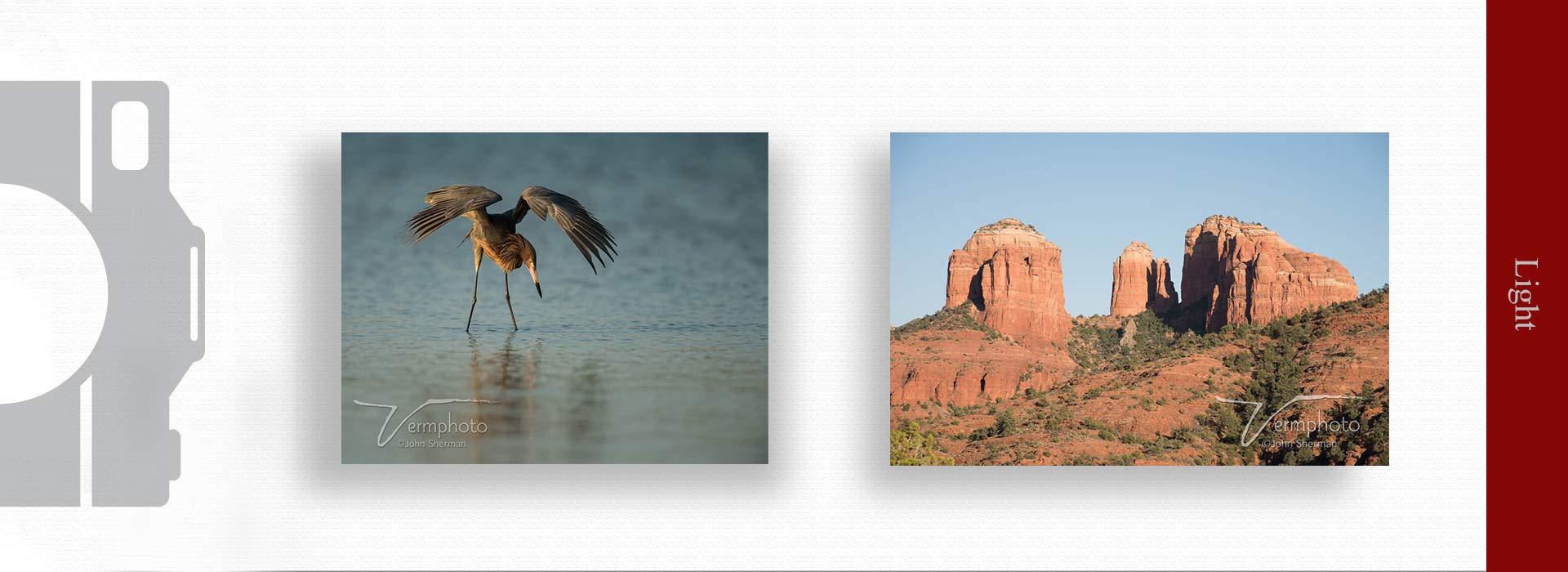 Light in photography 3 - مهمترین ویژگی های عکس خوب چیست ؟