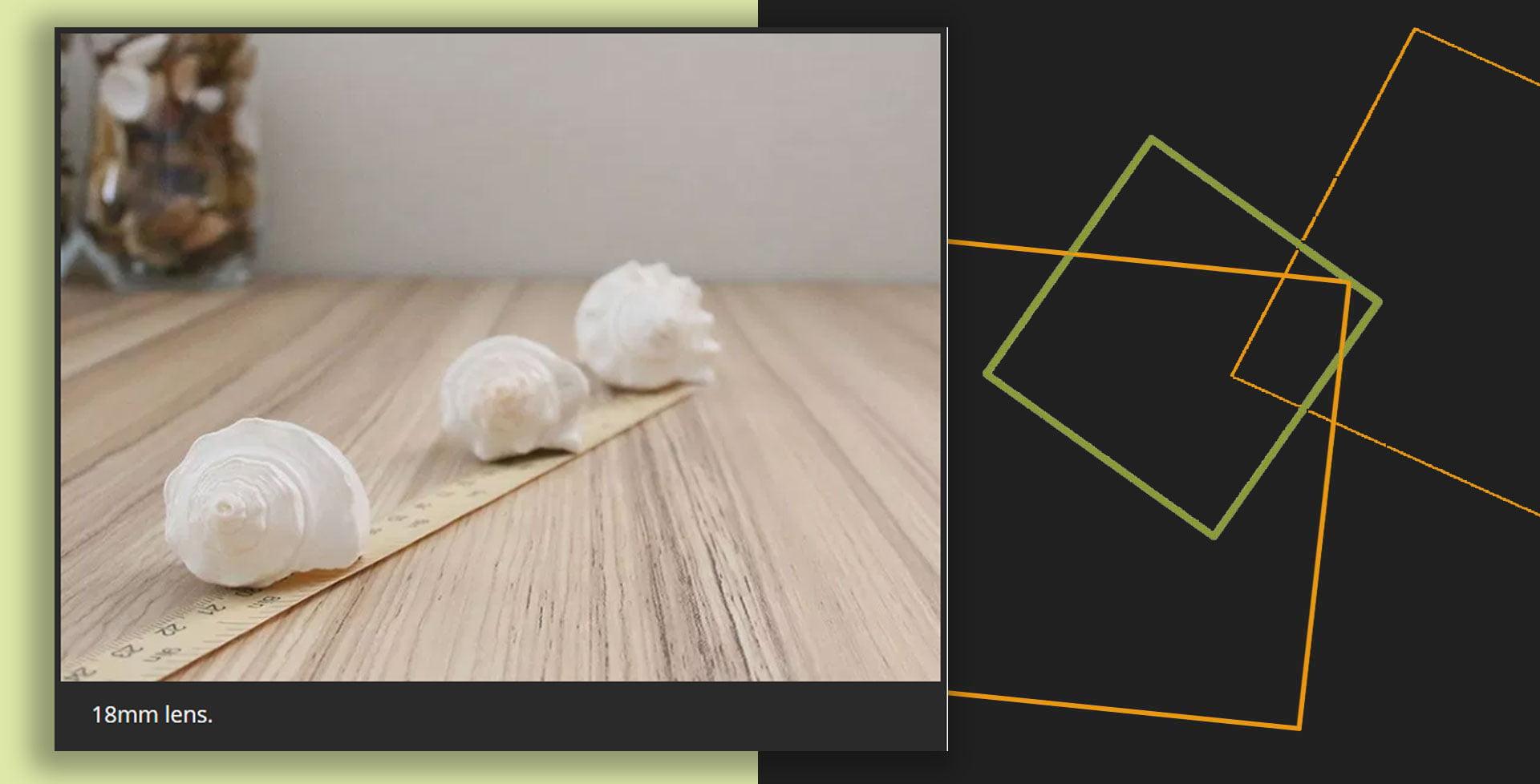 Still life Subjects  Understand Focal  Lengths9pg 2 - نحوه استفاده از سوژههای طبیعت بیجان برای درک فاصله کانونی