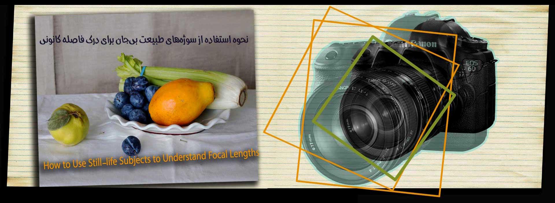 Still life Subjects  Understand Focal  Lengths 2 2 - نحوه استفاده از سوژههای طبیعت بیجان برای درک فاصله کانونی