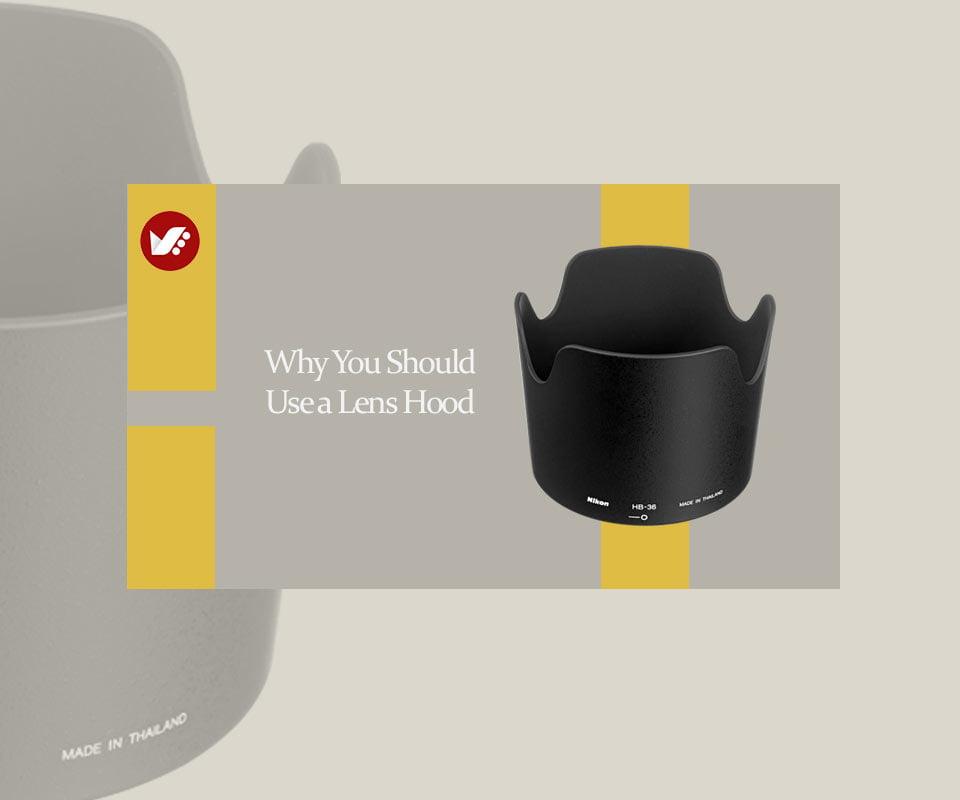 Why You Should Use a Lens Hood - زمان مناسب برای استفاده از هود لنز (آفتابگیر) و رسیدن به بهترین نتایج