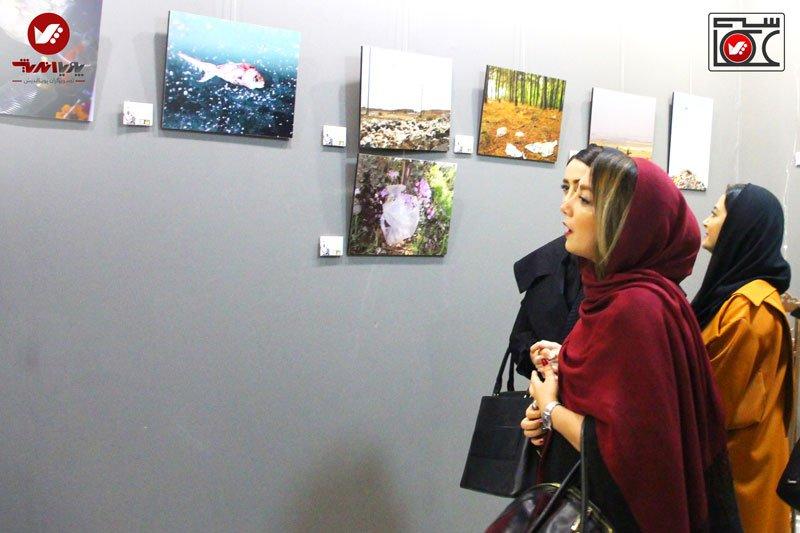 namayeshgah axasi honarjouyan pouyaandish zamin dar yek ghab 1 earth frame photography akkasi.art55 - نمایشگاه عکاسی زمین در یک قاب