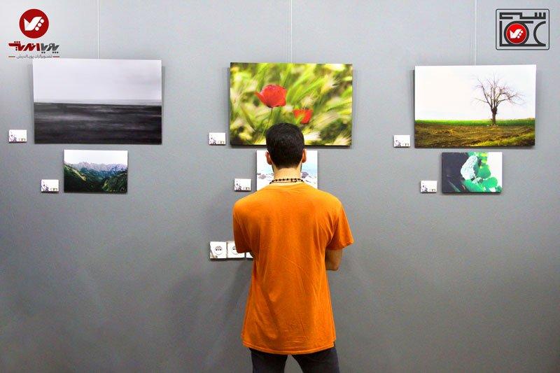 namayeshgah axasi honarjouyan pouyaandish zamin dar yek ghab 1 earth frame photography akkasi.art59 - نمایشگاه عکاسی زمین در یک قاب