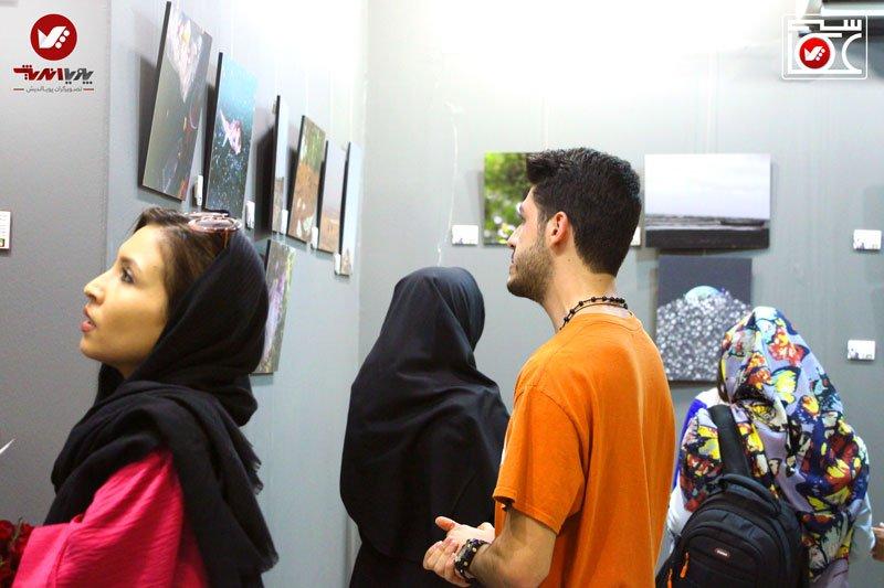 namayeshgah axasi honarjouyan pouyaandish zamin dar yek ghab 1 earth frame photography akkasi.art66 - نمایشگاه عکاسی زمین در یک قاب